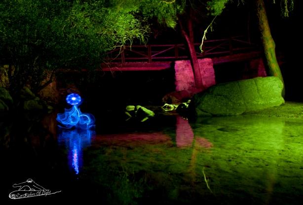 medusa agua verde