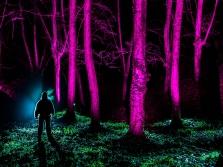 Galeria Light Hunters